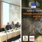 African_swine_fever_conference
