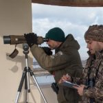 Italian waterfowl article (2)
