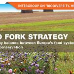 farm-to-fork-banner